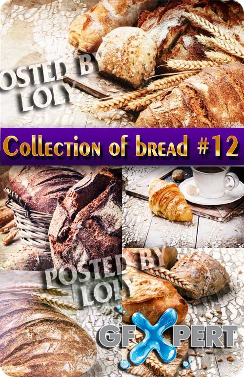 Collection of bread #12 - Stock Photo