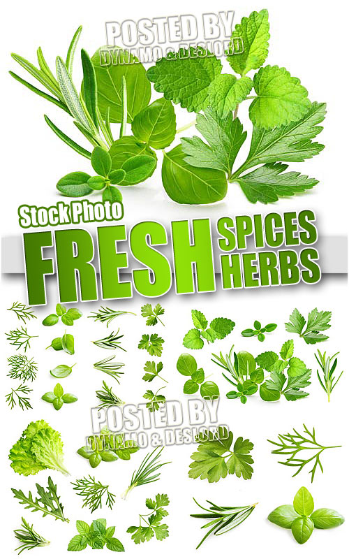Fresh spices and herbs - UHQ Stock Photo