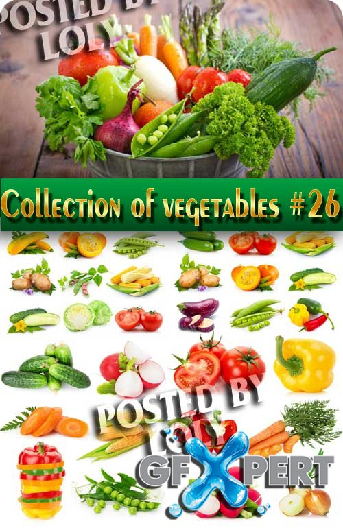 Food. Mega Collection. Vegetables #26 - Stock Photo