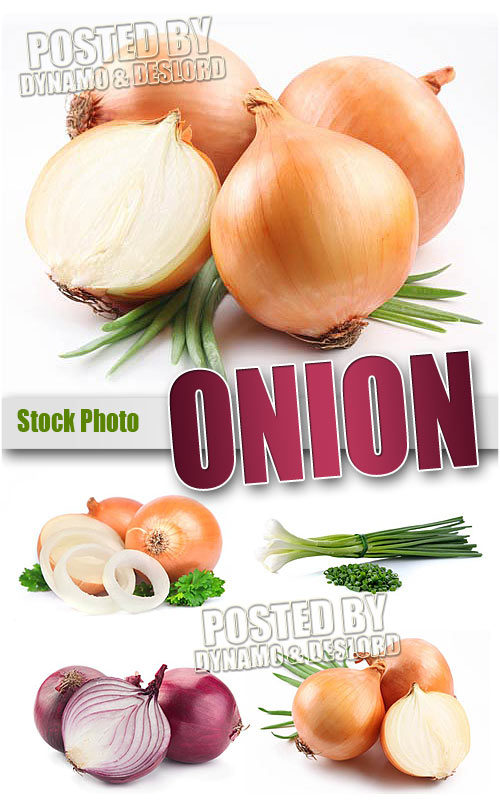 Onion - UHQ Stock Photo