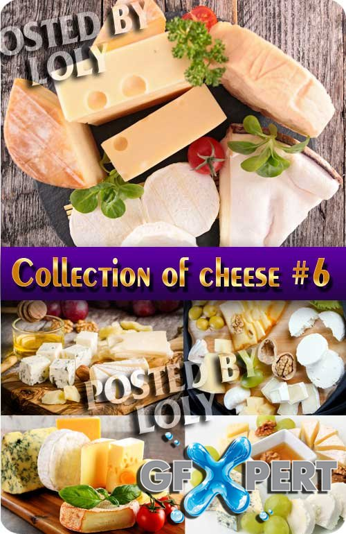 Food. Mega Collection. Cheese #6 - Stock Photo