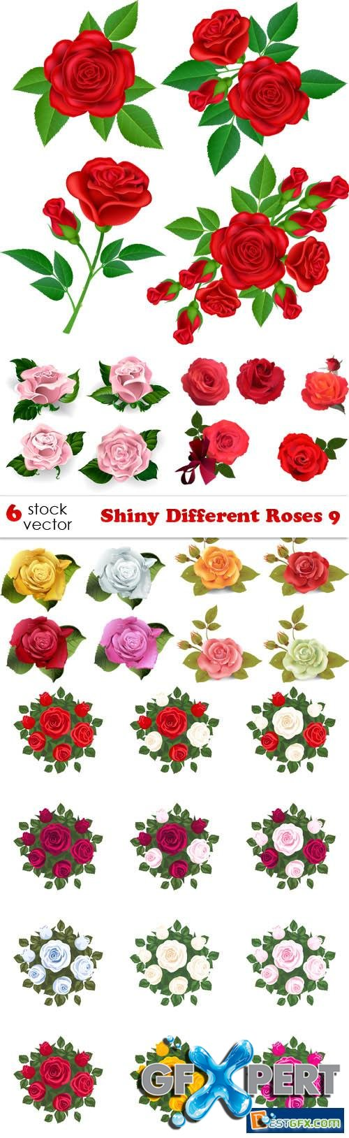 Vectors - Shiny Different Roses 9