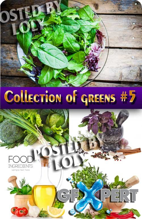 Food. Mega Collection. Greens #5 - Stock Photo