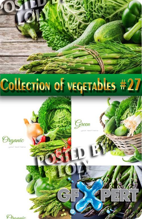 Food. Mega Collection. Vegetables #27 - Stock Photo