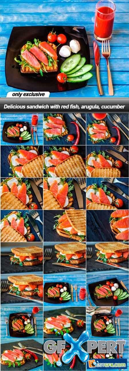 Delicious sandwich with red fish, arugula, cucumber - 23 UHQ JPEG