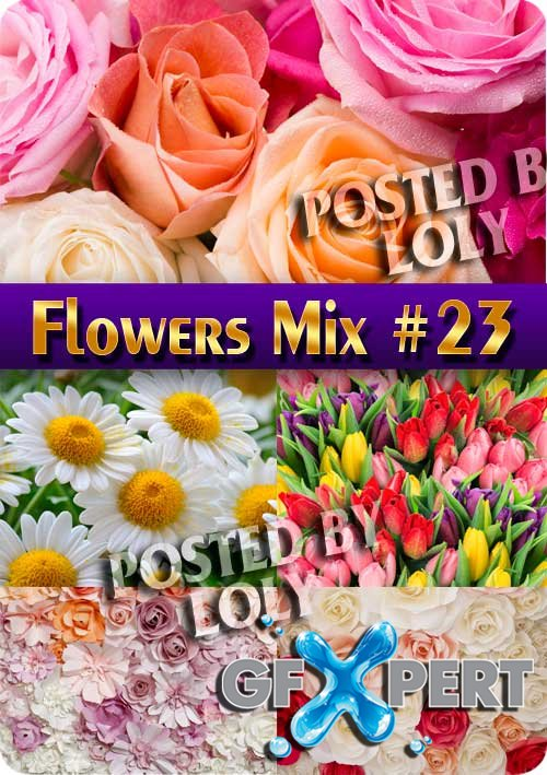 Flowers Mix #23 - Stock Photo