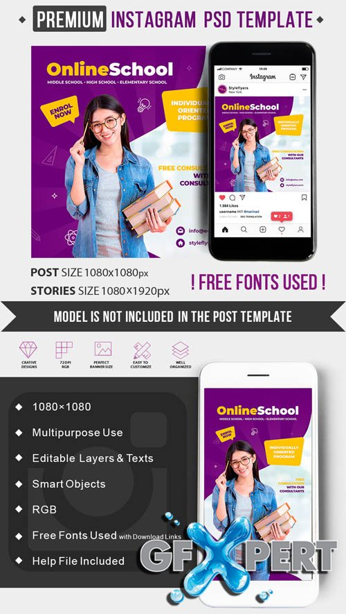Online School V1506 2020 PSD Instagram Post and Story Template